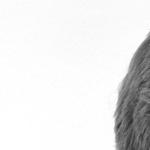 Jan-Felix Schrape