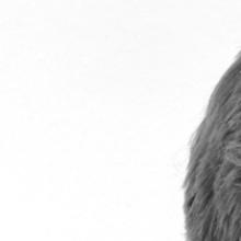 Dieses Bild zeigt  Jan-Felix Schrape